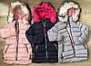 Куртки на меху для девочек оптом, S&D,4-12 лет., арт.KF-84