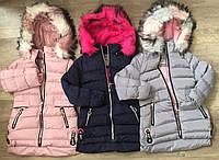 Куртки на меху для девочек оптом, S&D,4-12 лет., арт.KF-84, фото 1