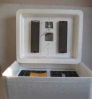 Инкубатор Несушка БИ-1 с автоматическим переворотом на 72 яиц