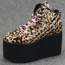 Стильные женские ботинки на платформе Ботильоны Леопардовые, фото 3