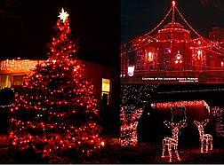 Новогодняя гирлянда 300 LED, IP44, Длина 24 М, Красный свет, фото 3