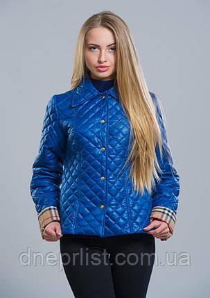 Куртка женская №9 (василёк), фото 2