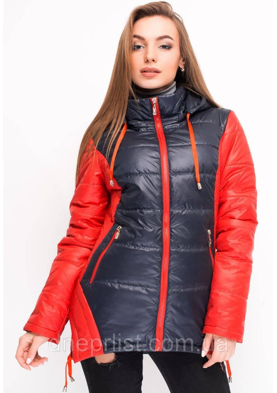 Куртка женская №24 (синий/красный)