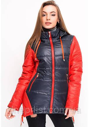 Куртка женская №24 (синий/красный), фото 2