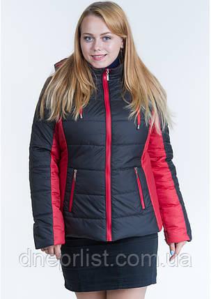 Куртка женская №15/2 (чёрный/красный), фото 2