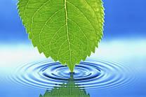 Іонізація води, жива і мертва вода.