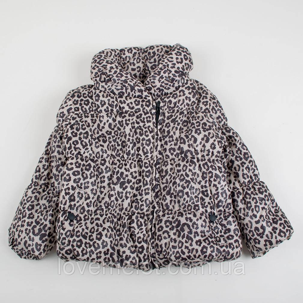 """Детская куртка деми F&F """"Леопардик"""" для девочки на рост 62,68,74,80,86см демисезонная детская курточка"""