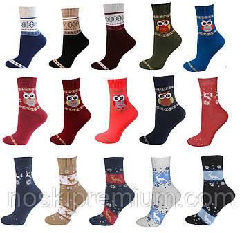 Шкарпетки жіночі махрові х/б Смалій, 23-25 розмір, асорті, 036001