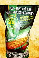 Кукуруза Кристель