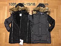Куртка утепленная для девочек оптом, F&D, 5/6-15/16 лет,  № 1035, фото 1