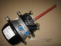 Камера торм. с пружинным энергоакк STANDARD (в сборе,тип 24/30) (RIDER), AFHZX