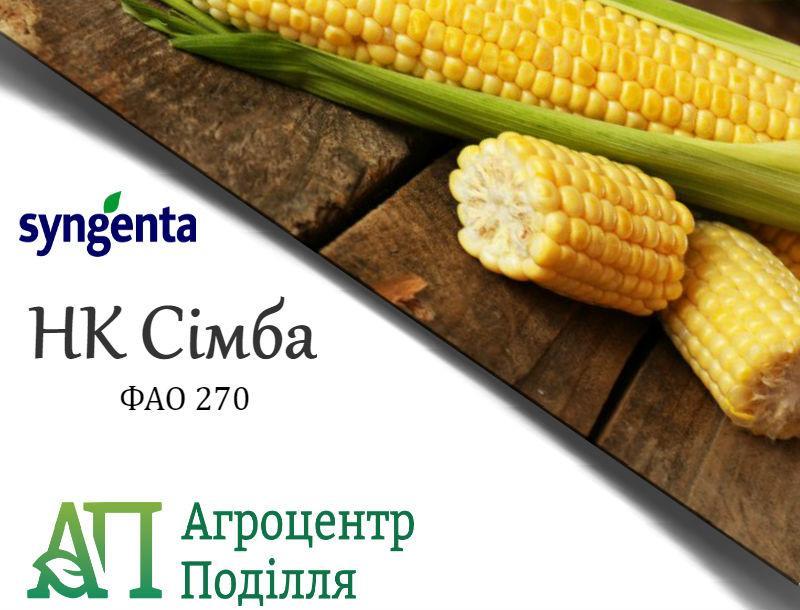 Семена кукурузы НК Симба (ФАО 270) Сингента