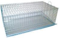Лори Клетка для перепелов цинк,330x590x235мм