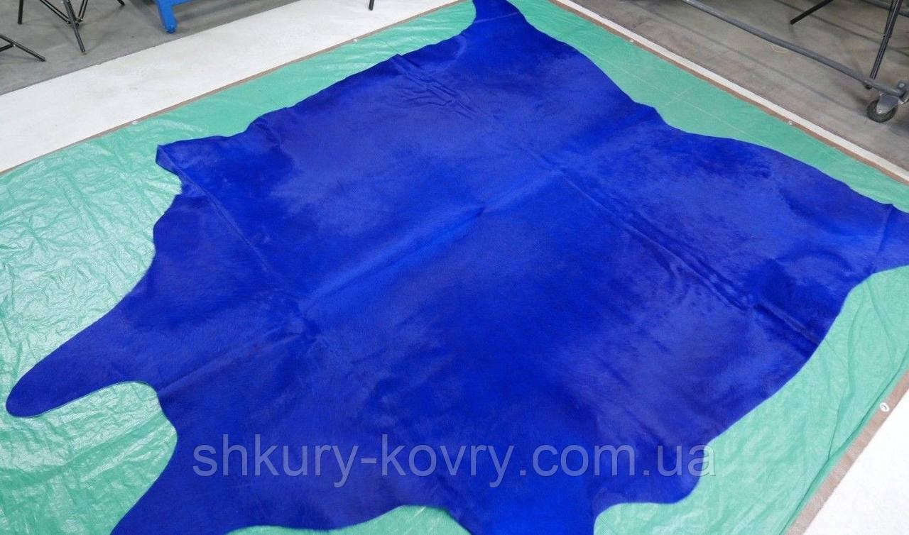 Бразильская коровья шкура покрашенная в ярко голубой цвет