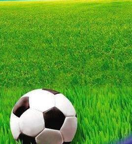 Смесь газонных трав Газон Спортивный, фото 2