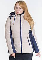 Куртка женская батал на синтепоне демисезонная плащевка, бежевая с синим d04e3f1a42e