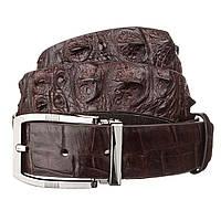 Ремінь чоловічий Ekzotic Leather з натуральної шкіри крокодила Коричневий (crb19)