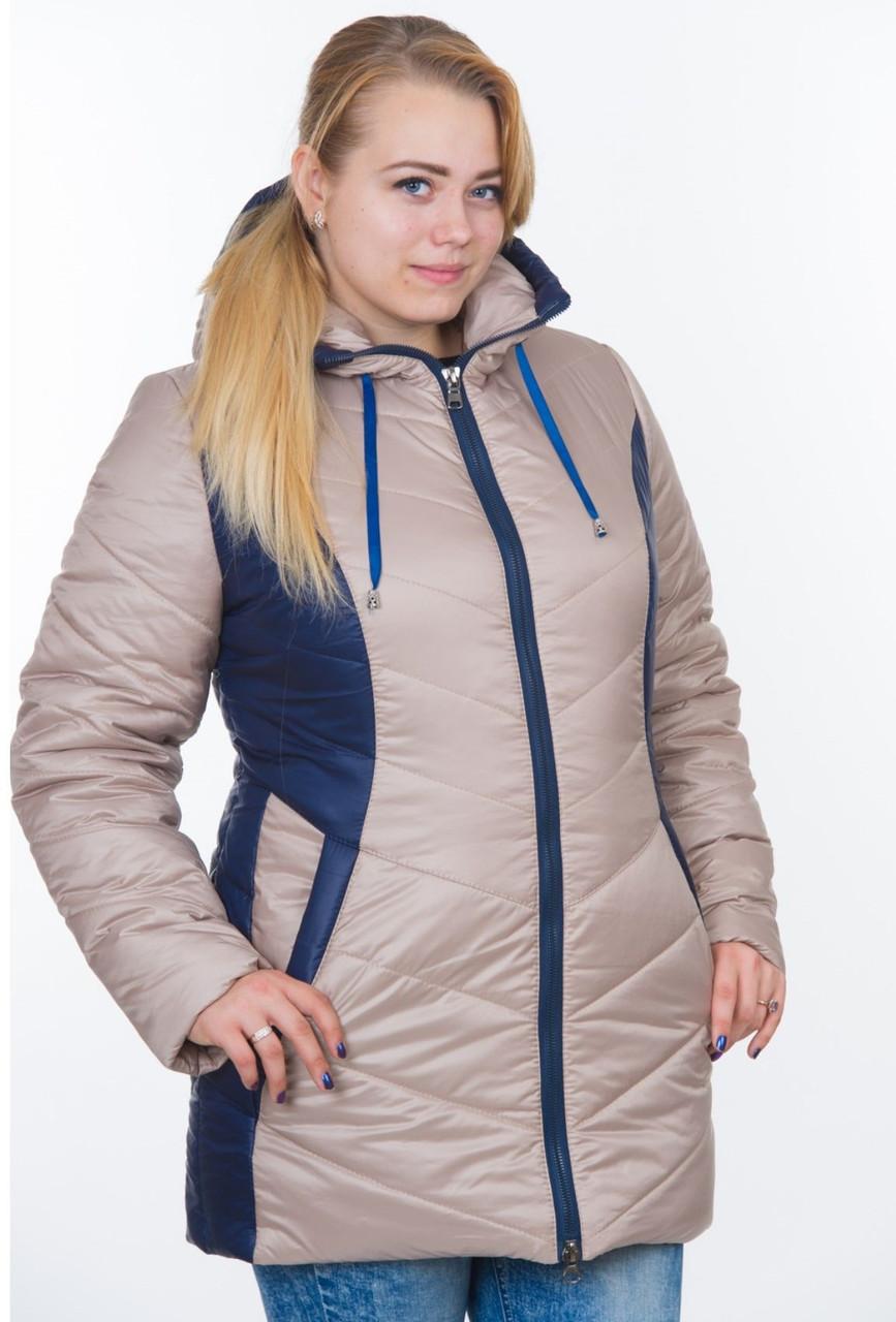 Зимова куртка на синтепоні жіноча тепла на блискавці, бежева з синім
