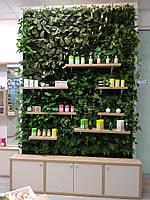 Фито стена, Фитостена, вертикальное озеленение, зеленая стена
