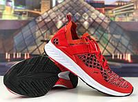 Мужские красные Кроссовки Puma Ignite Evoknit