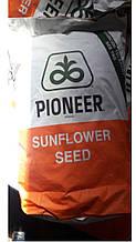 Семена подсолнечника П64ЛЕ25 Пионер