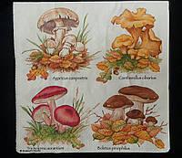 Декупажная салфетка с грибочками, трехслойная, 33х33 см, 8 гр.