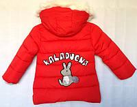 Куртка детская демисезонная для девочки оптом 2-5 лет синяя