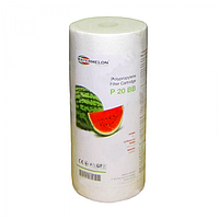 Картридж Watermelon P5-10BB