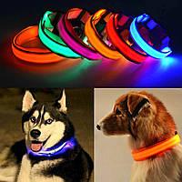 Светодиодный, светящийся ошейник для собак или кошек