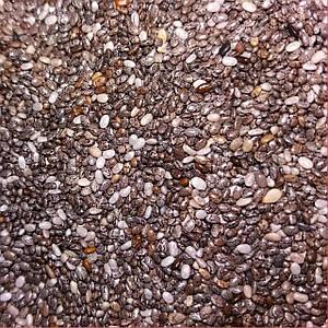Семена Чиа микрозелень
