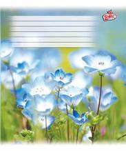 Тетрадь 24 листов клетка картонная обложка красные поля офсет  Бриск в ассортименте TB24KLE