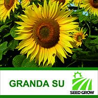 Подсолнечник  GRANDA SU (Seed Grow)