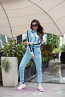 Женский спорт костюм из трикотажа с лампасами 205483, фото 1