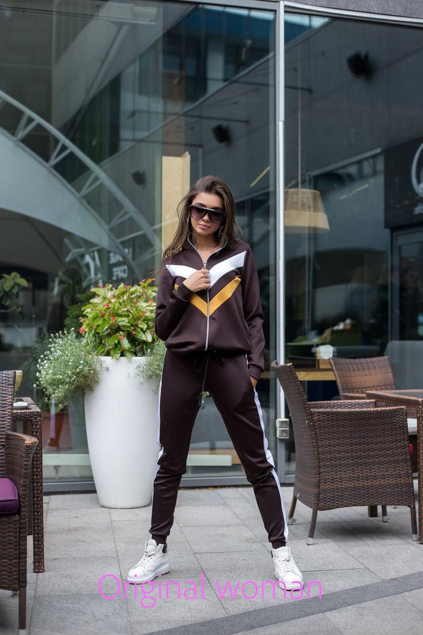 Женский спортивный костюм из дайвинга на молнии 205484