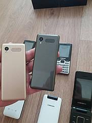 Кнопочный телефон Samsung D3 2 Sim