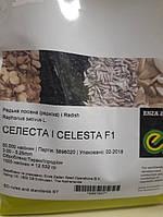 Семена редиса Селеста F1 50 000 шт, калибр. 3,00 - 3,25 мм Enza Zaden/Энза Заден