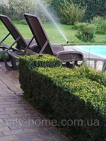 Лежак Pool, Италия  коричневый, фото 2