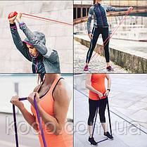 Петли для подтягиваний, Набор из 5-ти (от 2 до 68 кг) резиновые петли для спорта U-Powex латекс 100%, фото 2