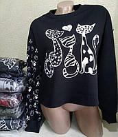 Батник с котами коттоновый женский