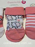 Шкарпетки дитячі Lupilu розмір Розмір 11-14 набір з 3 шт, фото 6