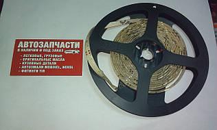 Лента светодиодная 24V на метраж Красная