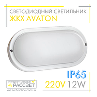 Cветодиодный светильник ЖКХ AVT 12W IP65 6000K Oval