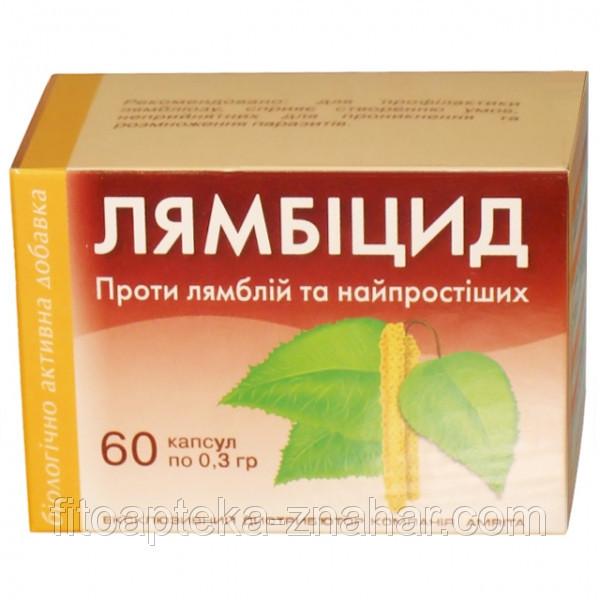 лечение от глистов у взрослого человека таблетками