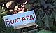 Семена свеклы Болтарди F1 Syngenta  100000 семян, фото 3