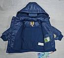 Куртка  для мальчика голубая (QuadriFoglio, Польша), фото 4