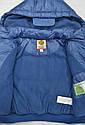 Куртка  для мальчика голубая (QuadriFoglio, Польша), фото 5