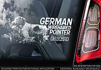 Дратхаар (Немецкая жесткошерстная легавая) (Немецкий жесткошерстный поинтер) стикер