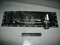 Бак радиатора МТЗ 80, Т 70 нижний (латунь) (пр-во г.Оренбург)