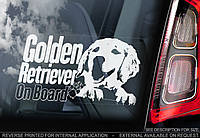 Золотистый ретривер стикер