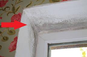 Как избавиться от плесени на пластиковых окнах?